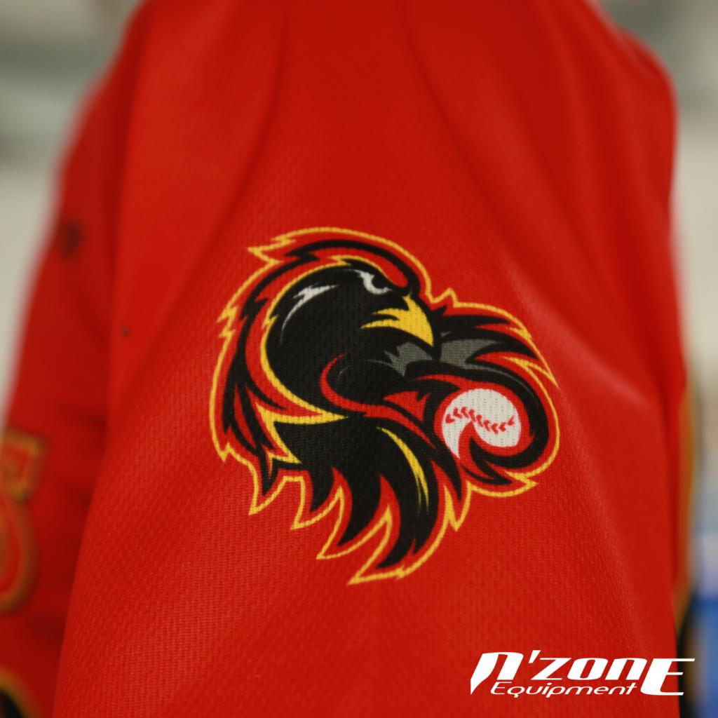 Logo manche du maillot des Redwings de Rennes