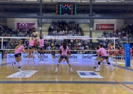 Volley Nzone